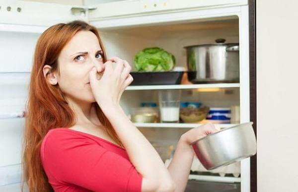 Der Wasch Kühlschrank von Geruch