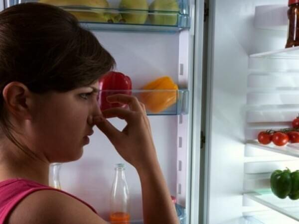 Что делать, если из холодильника воняет