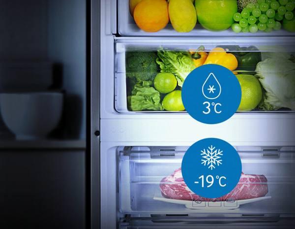Какая температура должна быть в холодильной и морозильной камере