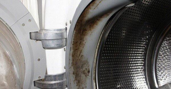 Затхлый запах из стиральной машины автомат
