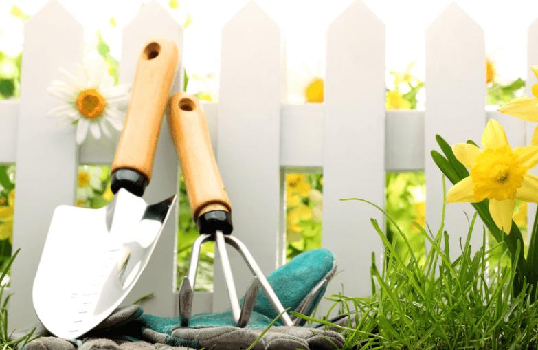 Как правильно ухаживать за садовым участком