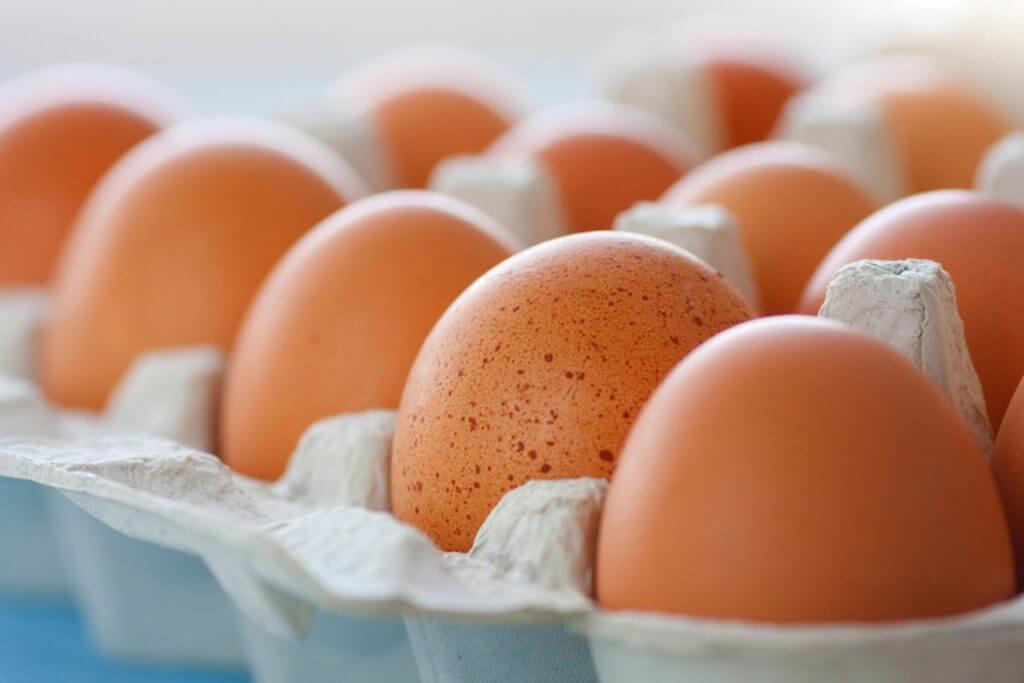 Сколько дней можно хранить яйца