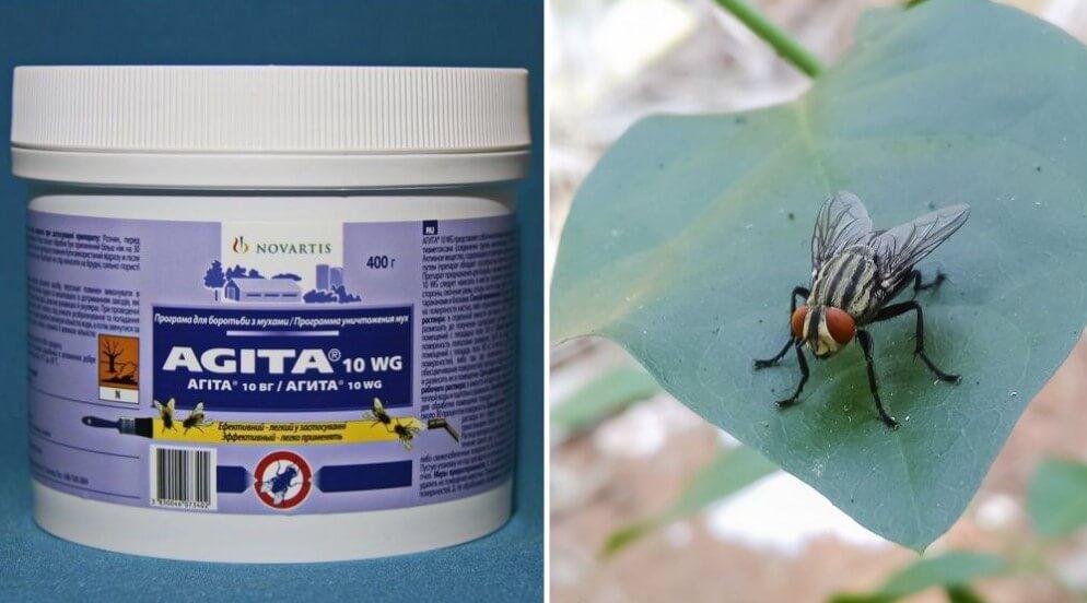 Как вывести мух в домашних условиях