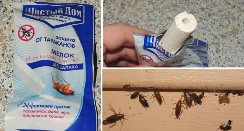 Особенности использования мелка от тараканов машенька. Польза и вред мелка «Машенька» от тараканов